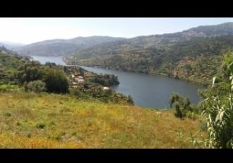 Lote de Terreno - Vistas panorâmicas sobre o Rio Douro